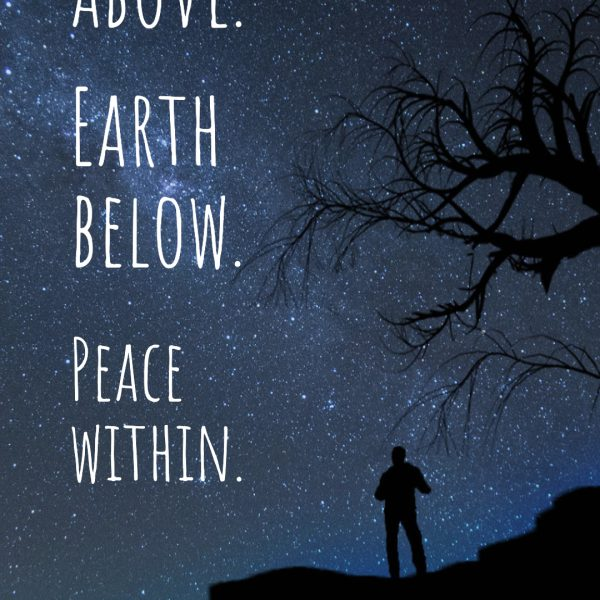 Quote is in front of a star filled night sky. A silhouette of a cliff, person, and parts of an empty tree can be seen on the bottom. Katie Murch and photo credit is on the bottom right of the image.