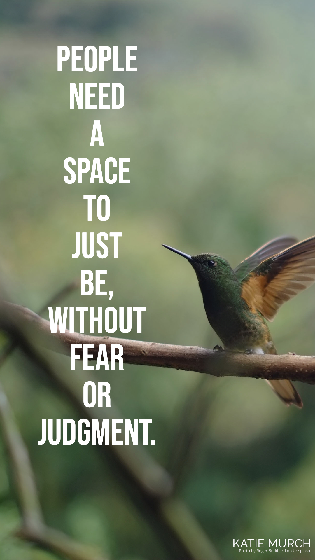 Quote is on the left of the photo while in the back is a green and brown hummingbird with its wings open perched on a brown branch. Katie Murch and photo credit is on the bottom right of the image.